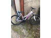 "Mountain bike 26"" ladies full size 12 to adult"