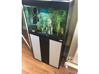 Roma 90 tank/aquarium for sale