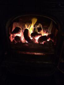 Peat - firewood