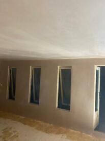 Professional plaster