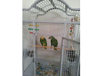 Grey Liberta UK Voyager Cage, Macaws Parrot, Cockatoo, Amazons, Ringnecks, Medium size