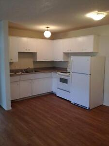 2 Bedroom -  - Royal Oak - Apartment for Rent Edmonton Edmonton Edmonton Area image 4