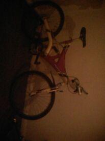 Vendetta apollo and element1 bike frame