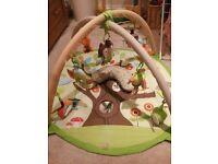 Skip Hop Tree top Friends Baby Gym
