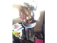 Biorb fish tank and stand