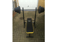 Everlast Weights Bench, Barbell, Dumbbells, Weights