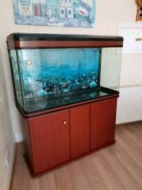4ft 300Litre Aquarium