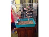 Bird cage with accessories and comes with some bird food too
