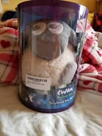 Ewan the musical sheep
