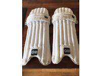 Boys cricket batting pads
