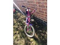 Pink and Purple Bike