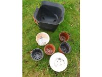 FREE : Selection of Plant Pots