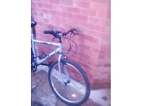 Man's bike for sale