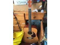 Volt special edition acoustic guitar