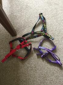 3X Dog Harnesses