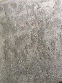 New grey long pile Carpet for sale 13ft x 9ft 6
