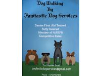 Pawtastic Dog Walking Services