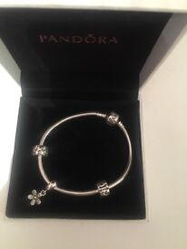 Brand new never worn pandora bracelet with charm and spacer