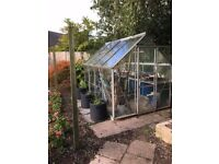 Greenhouse For Sale (open to offers)