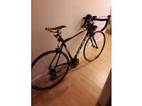 Carrera 7005 T6 bicycle