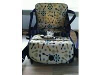 Munchkin Toddler Booster Travel Seat