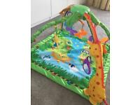 Jungle play mat - collection only