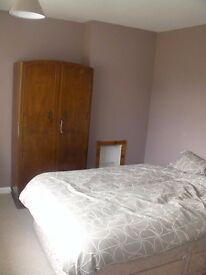 Double room near UEA, fantastic garden