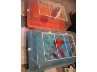 Free to collect all, hamster ferplast cages and accessories