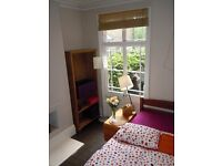Sunny room available in attractive Victorian House