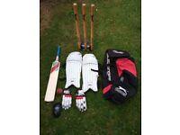 Cricket Set Bat Pads Gloves Wickets Bag Ball