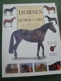 Riding Techniques & Horse Manual