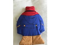 Paddington pillow/cushion