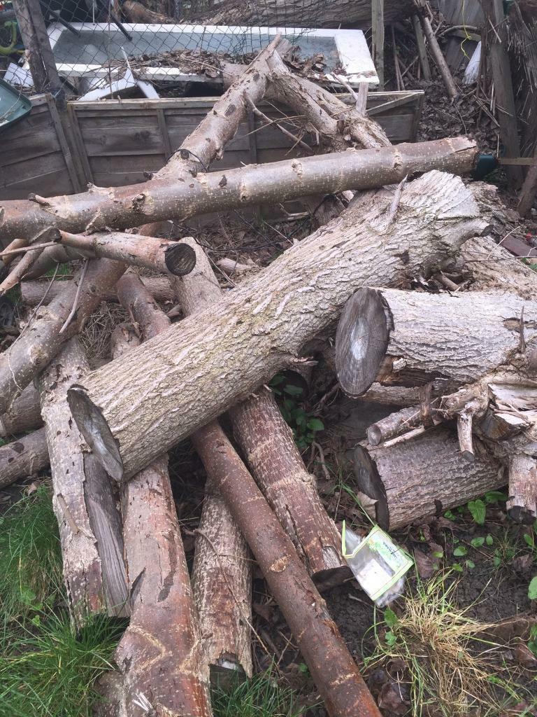 *FREE LOGS FOR COLLECTION* | in Rotherham, South Yorkshire ...