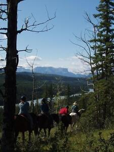 Guided Horseback Trail Rides Near Jasper National Park Edmonton Area image 2