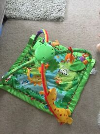 Jungle play gym