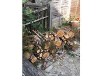 Logs - need drying