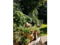 Kris Gardening Services