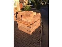 Edehall Building Bricks 750 qty!