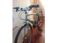 Reflex road bike for sale