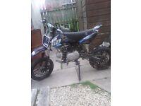 110 WBP pit bike