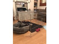 ***REDUCED*** MASSIVE Puppy Bundle 38 items! EVERYTHING needed to bring a new puppy home