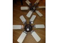 Ceiling light fans