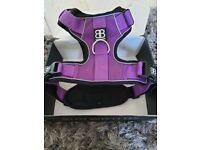 Large padded dog harness