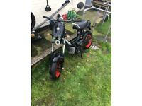 50cc tomos racing 45 RARE