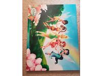 Disney fairy canvas