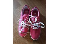 Pair of Pink Vans, Brand New in Box, Size 5