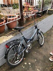 Raleigh foldable bike
