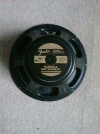Guitar Amplifier Speakers