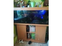 aquarium complete