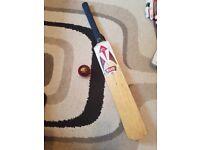 HS slazenger bat and match ball
